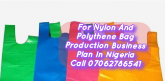 2020 Nylon and Polythene Bag Production Business Plan  in Nigeria PDF